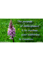 The Purpose of Development